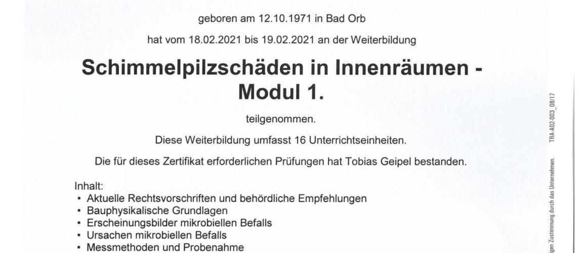 Schimmelpilzschaeden-in-Innenraeumen-Modul-1